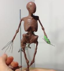 Wwt sculpt human anatomy