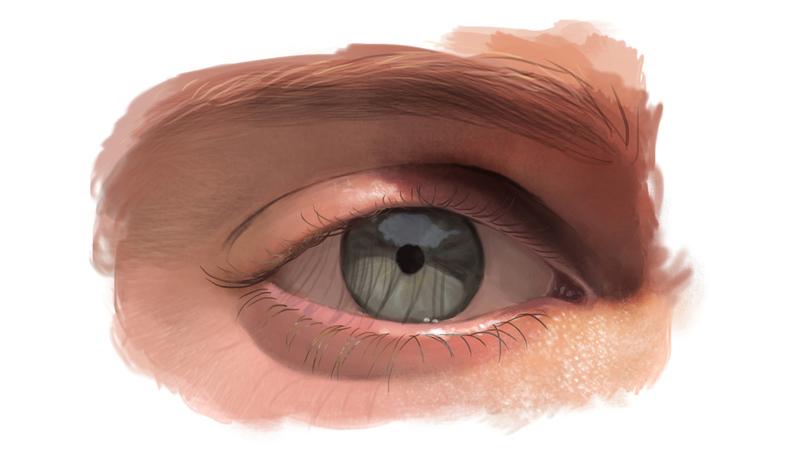 Understanding the Eyes