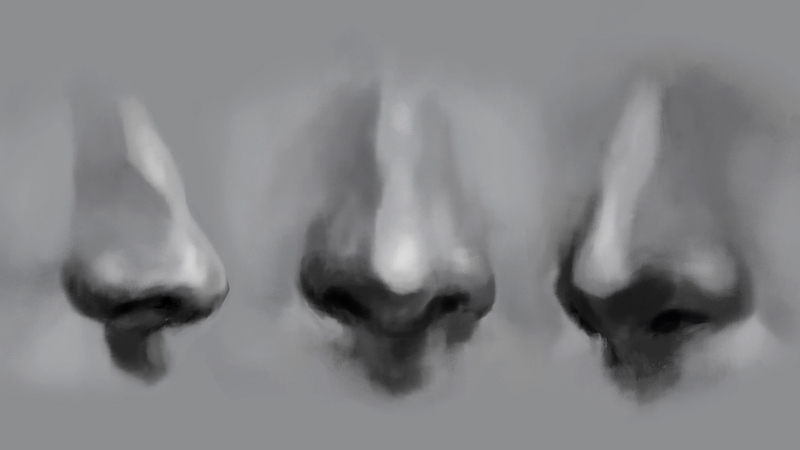 Let's Draw the Nose
