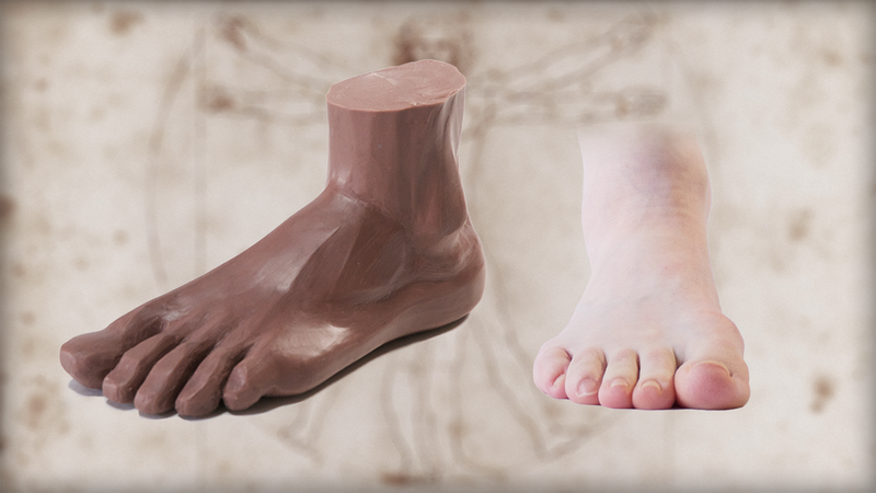 Sculpting the Human Foot