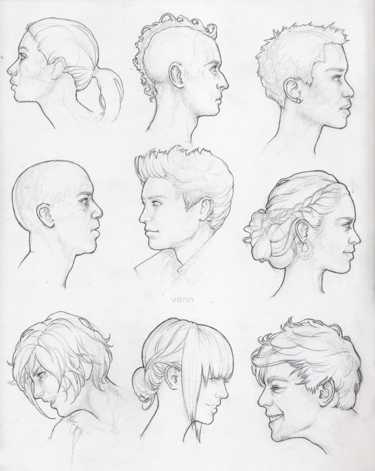 Head Profile Study