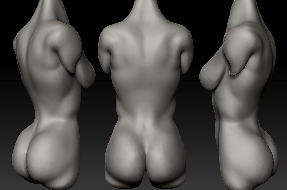 Anatomy Study: The Female Back - CG Cookie