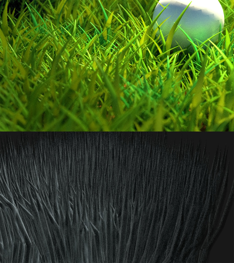 Grass Practice