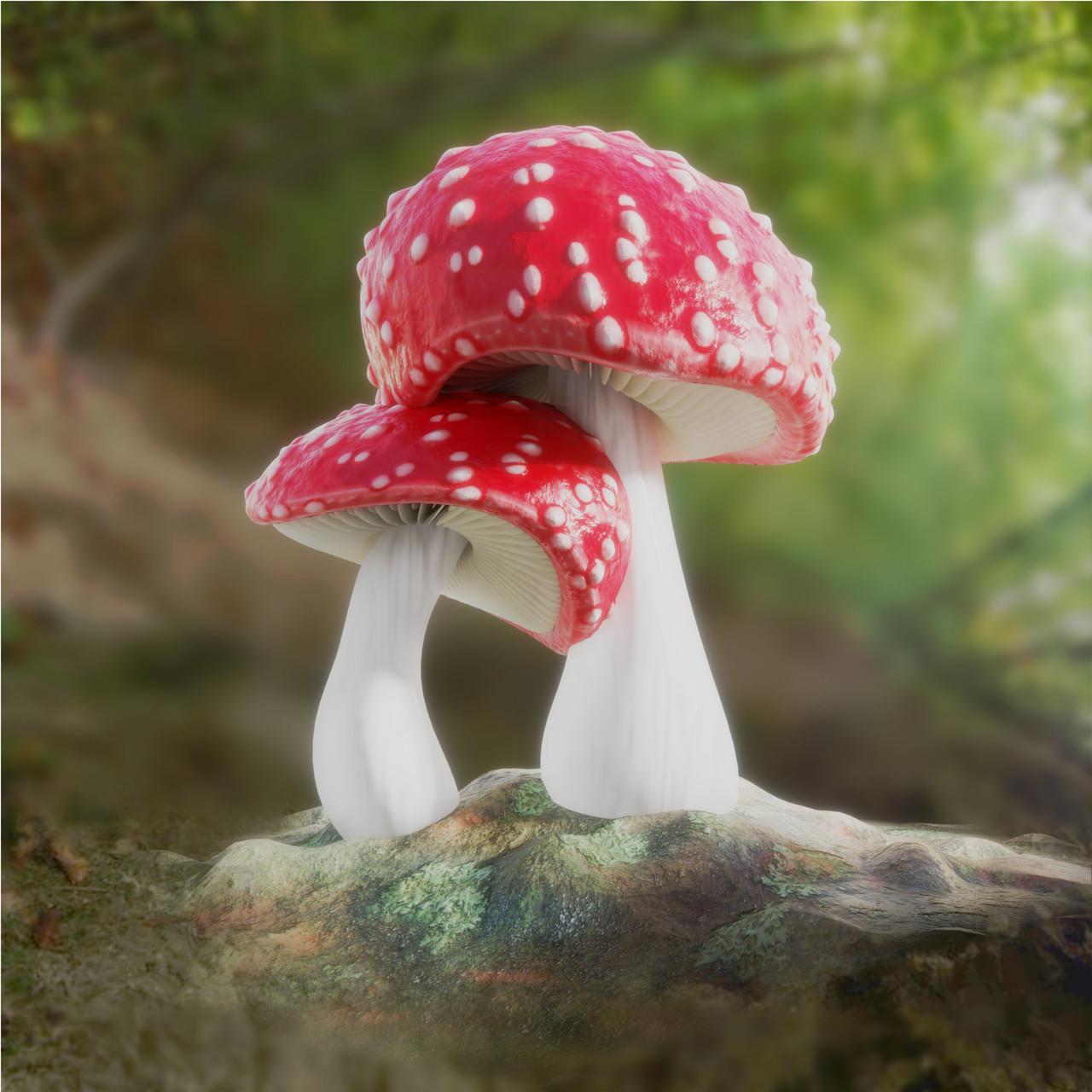 Mushroom Cuddle