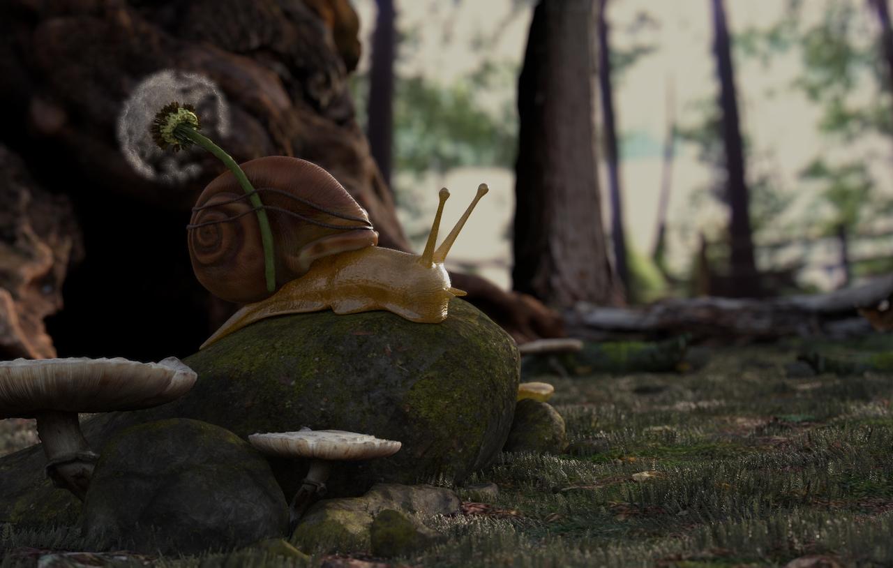 Snail's Adventure