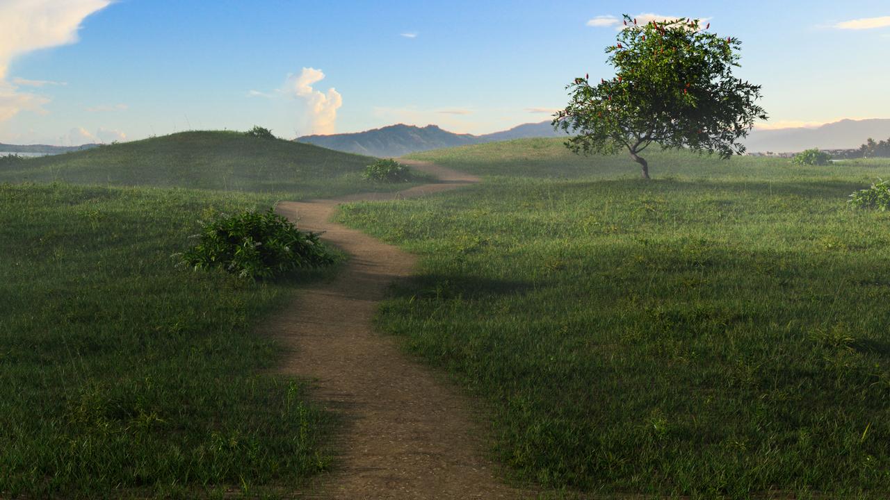 Meadow Nature Scene