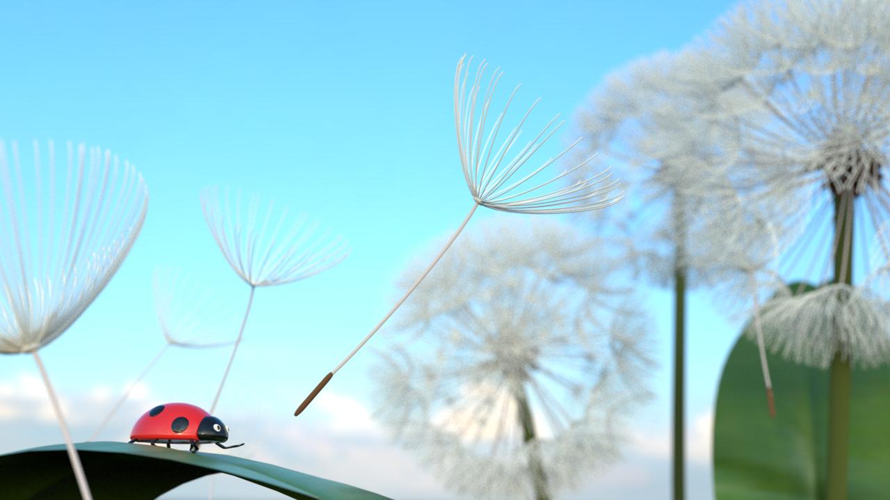 Ladybug with Dandelion