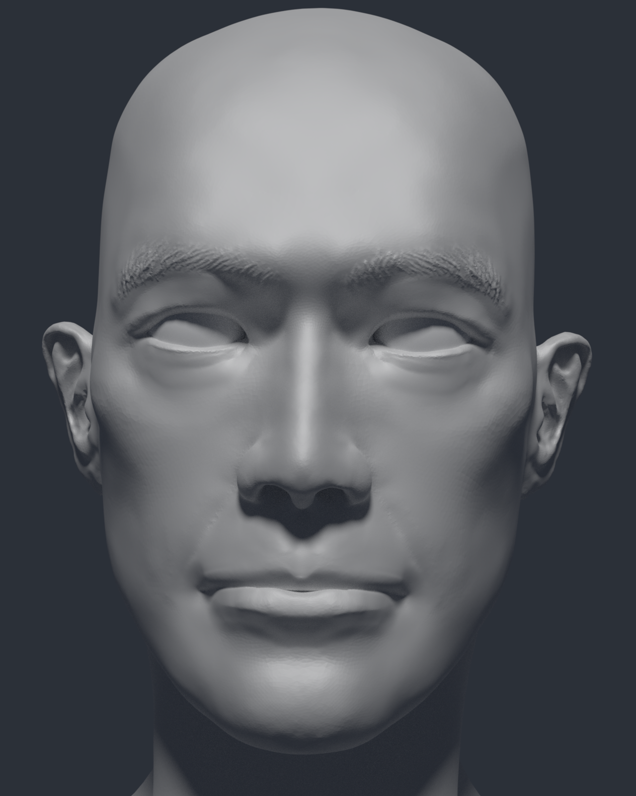 Mishima Head study