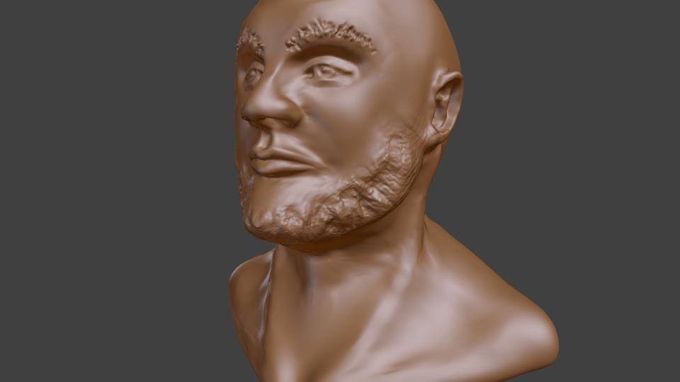 Bearded Male Sculpt