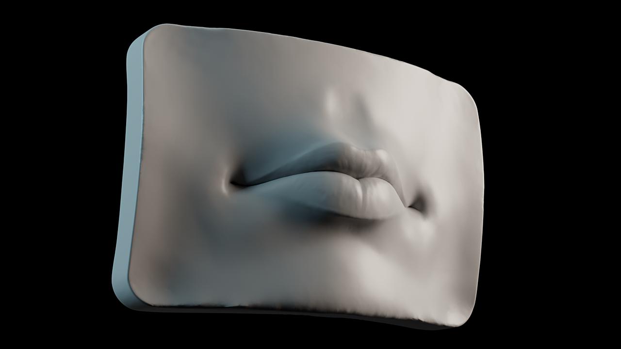 Facial Anatomy Practice