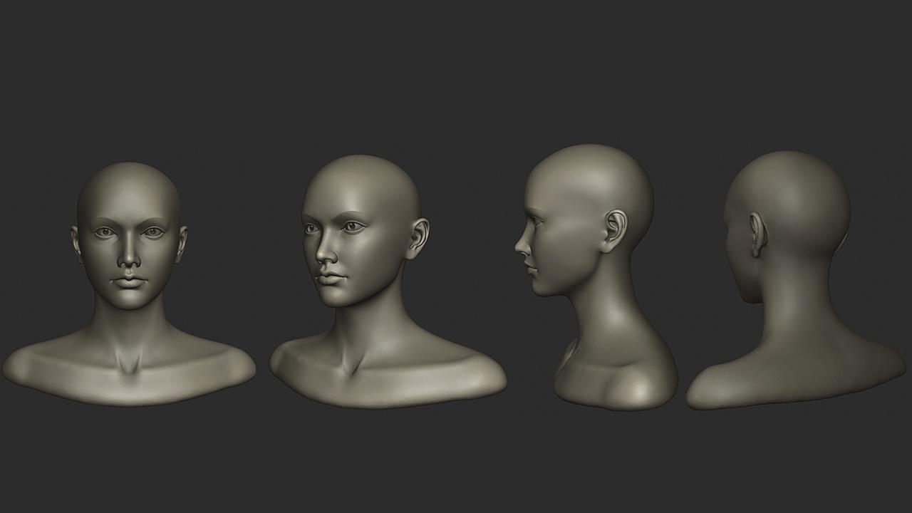 Female bust sketch