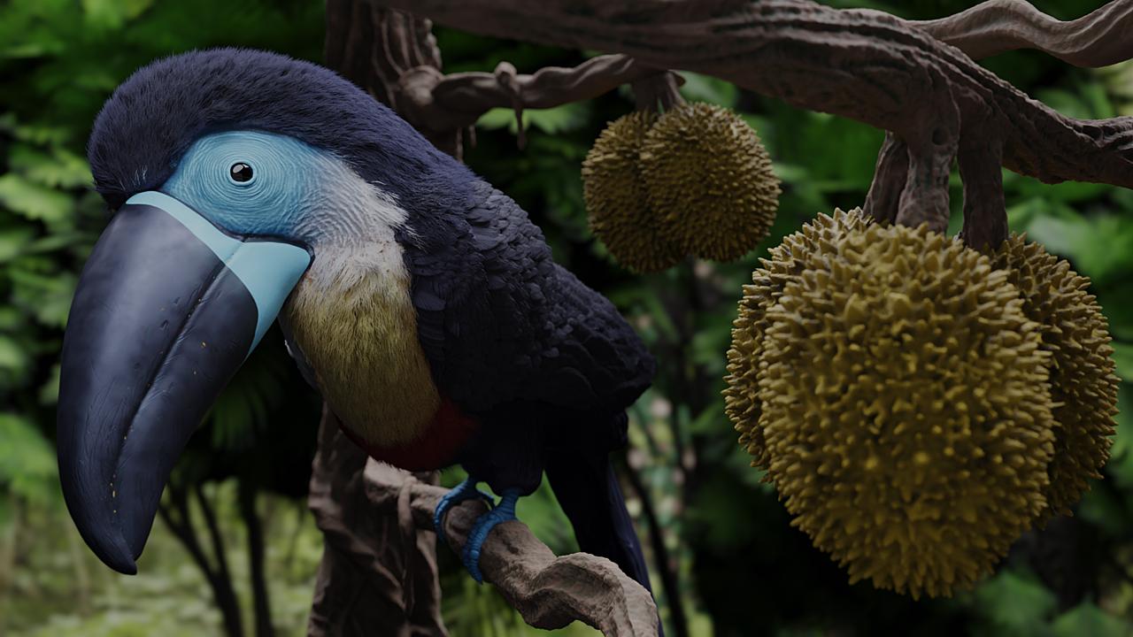 A Curious Beak