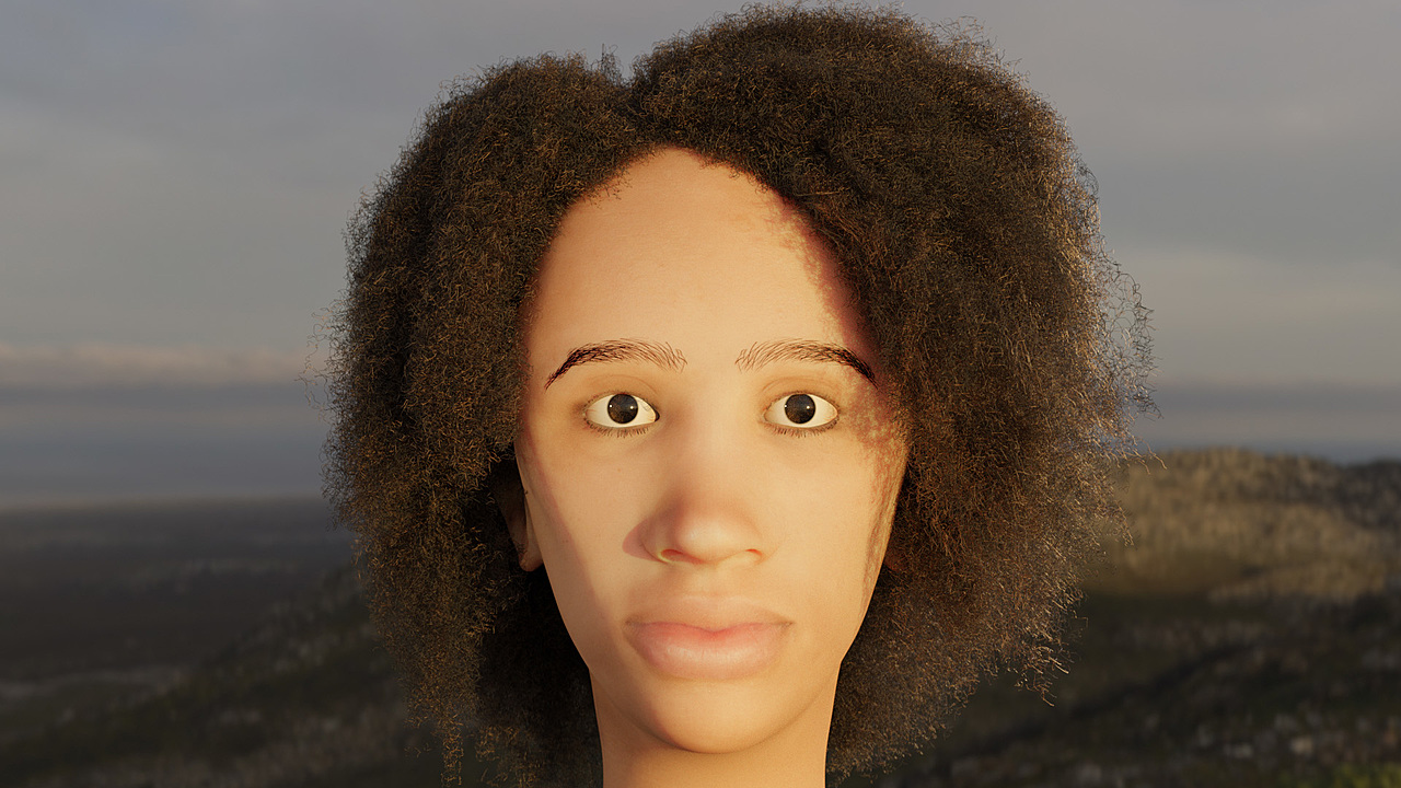 Human Face with Frizzy Hair