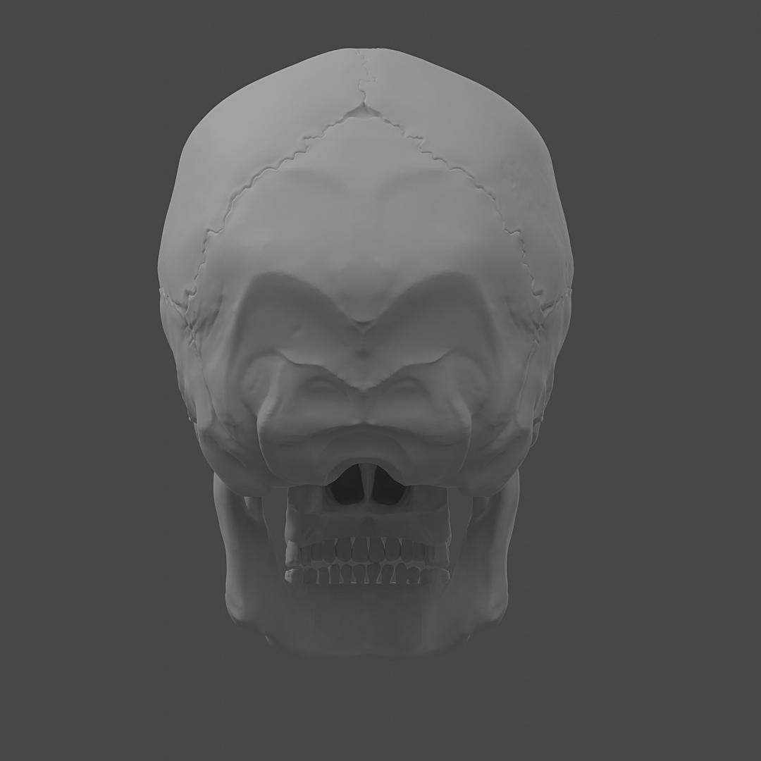 Skull Sculpting Practice