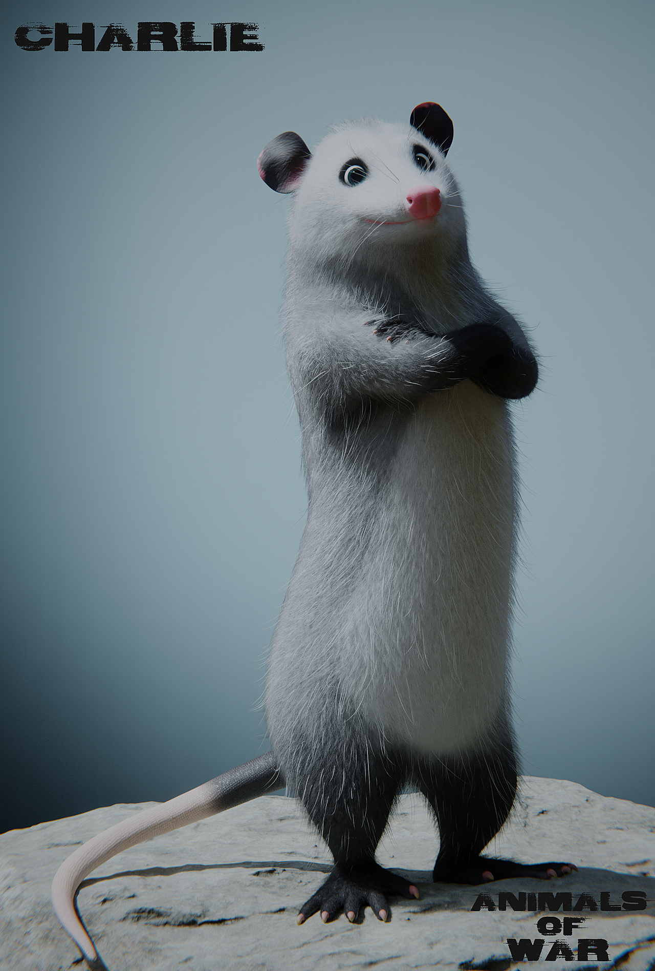 Charlie The Opossum!