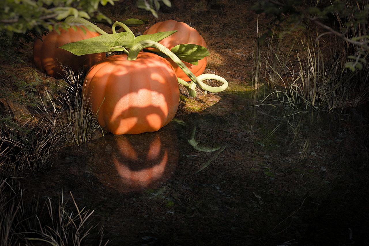 Pumpkin Mirror