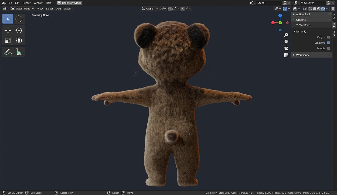 Baby Lion - Model